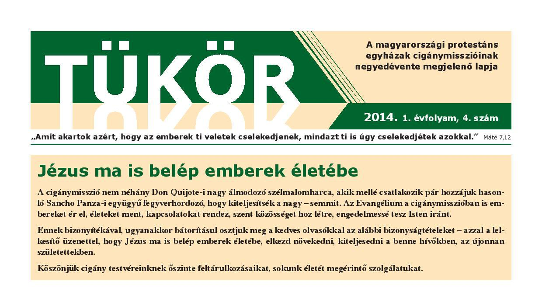Tukor201404fejlec